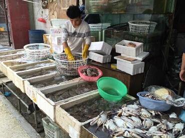 2016郑州海鲜批发市场图片大全