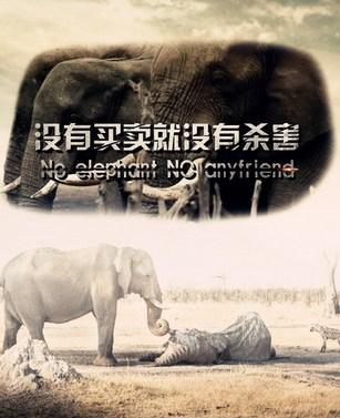 卖野生动物被诉 穿山甲,熊掌等珍稀保护动物被杀害[图]