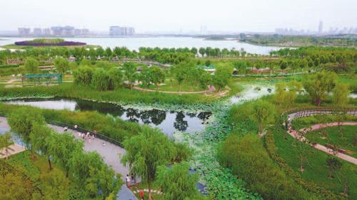 郑州市北湖湿地公园风景宜人