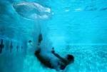 跳水头部触底致瘫 游泳馆被判赔45万 游泳馆跳水注意事项【图】 - 河南频道新闻