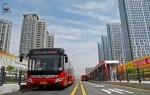 郑州许多路段出现黄色标线 + 白色箭头,这种新型车道咋走? - 河南一百度