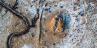 考古学者探寻汉代西域都护府城址遗迹 - 河南频道新闻
