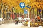 """限行十天,网友提议多设置自行车专用道—— 让绿色出行有""""路""""可骑 - 人民政府"""