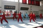 我校孔子学院2017年太极拳班结业典礼暨汇报演出举行 - 河南大学