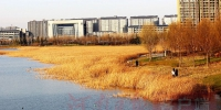 郑州试水集体建设用地建租赁房 首批圈定东区以90平米以下户型为主 - 河南一百度