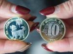 狗年生肖纪念币登场 发行量与鸡年生肖纪念币相比减少30% - 河南频道新闻