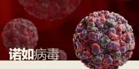 平昌冬奥会疑曝集体食物中毒 大约30人送医 或因诺如病毒感染 - 河南频道新闻