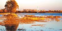 """投资2000多亿元 谋划""""大生态"""" 郑州启动国家生态园林城市建设 - 人民政府"""