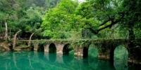春节假期全国森林旅游人数同比增21.8% - 河南频道新闻