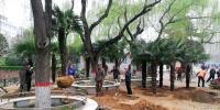 郑州绿城广场2.2万㎡绿化被迁走,未来会变成啥样? - 河南一百度