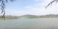 新密建第二植物园、登封建野生动物园...郑州将规划43个郊野公园 - 河南一百度