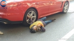 白发老太碰瓷儿保时捷 躺地上拽着车轮毂不起来 - 河南一百度