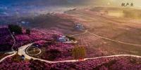 驻马店南阳濮阳被授予国家森林城市 河南省辖市荣获国家森林城市数量位居全国首位 - 河南一百度