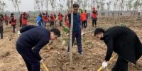 省红十字会积极参加冬季义务植树活动 - 红十字会