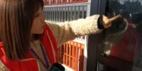 手机扫一扫就能免押金借书!河南首台24小时信用借阅机亮相郑州 - 河南一百度