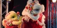 """新西兰国博举办""""中国舞台日"""" - 河南频道新闻"""