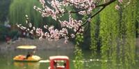 野炊、放风筝、赏花……郑州踏青攻略来了!告诉你公交出行咋便捷 - 河南一百度
