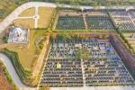 探访郑州墓地:部分报价近9万元/㎡,不同墓地价格相差数十倍 - 河南一百度