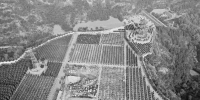 郑州周边墓地价格:有墓地报价每平方米近9万元 - 河南一百度