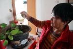 """郑州垃圾强制分类进行时!不等分拣中心建成,这里的厨余垃圾已""""清零"""" - 河南一百度"""