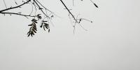 今天降温明天升温天气不晴 我省局部有雪基本还在山区 - 河南一百度