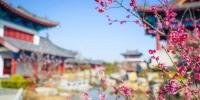 各景区、旅行社、酒店注意了!郑州市发布:重磅消费措施…… - 河南一百度