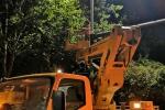 """营造安全出行环境!郑州对遮挡路灯、信号灯的5910株行道树进行""""整容"""" - 河南一百度"""